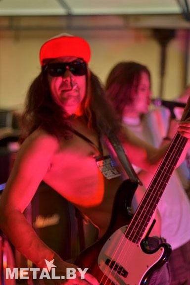 Басист Disane